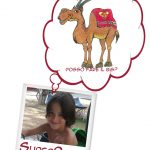Il cammello